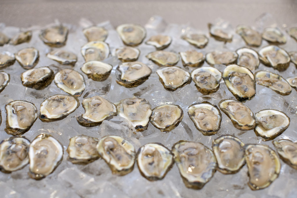 Oyster Wedding Catering Maryland